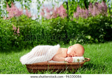 0-7 deys baby. New born baby, sleeps in basket , outdoor.