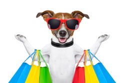 dog with shopping bags