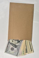100 Dollar banknote in bown paper bag