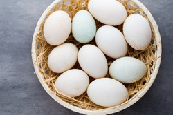 Duck eggs on a cage gray background.