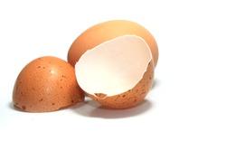 Eggshell on white background
