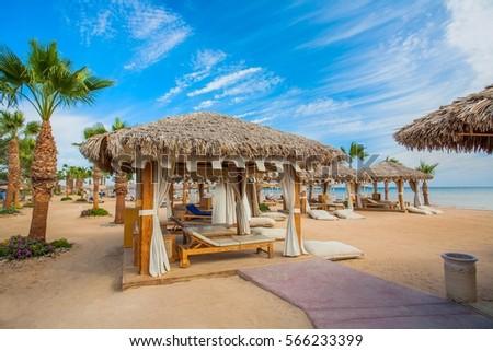 Egyptian beach #566233399