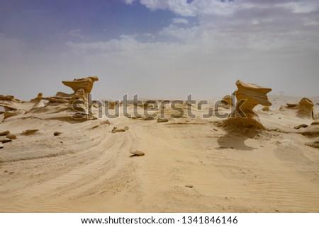 endless desert view  #1341846146