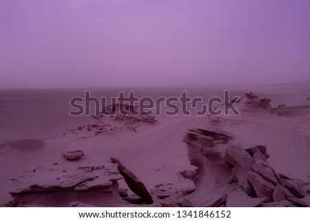 endless desert view  #1341846152