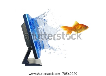 escape from monitor the goldfish on white background