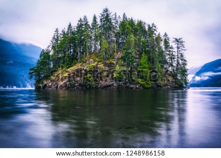 Evergreen Forest Island. Jug Island, Belcarra, British Columbia, Canada. Pacific Northwest landscape background with copy space. Vintage look.