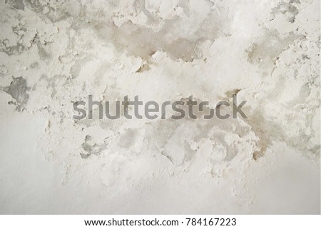 Excessive moisture can cause mold and peeling paint wall such as rainwater leaks or water leaks. #784167223