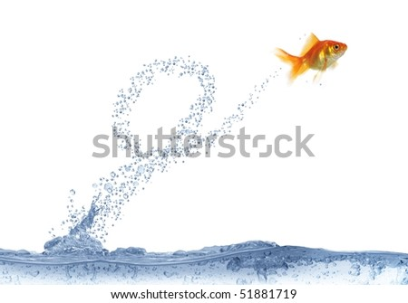 executing after loop jump on white background fish