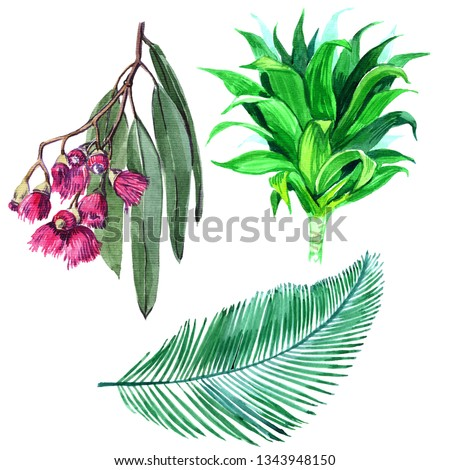 Exotic tropical Hawaiian summer. Jungle palm tree leaves botanical. The leaves of the botanical garden plants, flower foliage.-Illustration