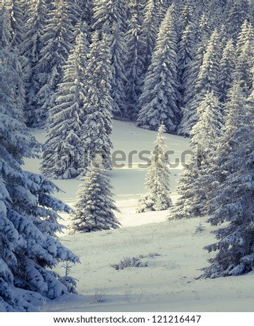 Fairy-tales snowfall in winter forest. Vintage stylized