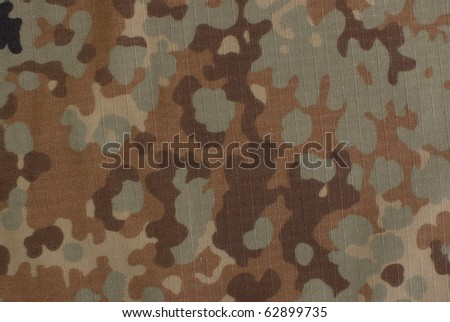 fall camouflage fabric