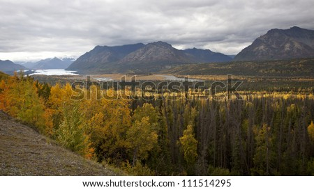 Fall foliage in Alaska