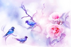 Fantastic colorful small birds and beautiful pink roses in the snow and frost on a blue and pink background. Snowing. Artistic spring and winter natural image. Selective and soft focus.
