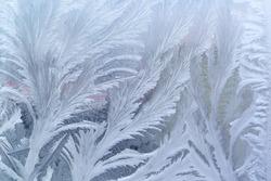 Feathery frost pattern - ice flowers on window glass.