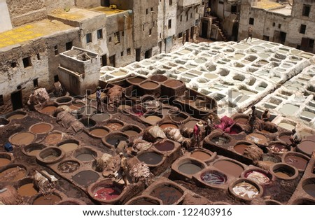 Fes Tannery pits , Morocco, Africa