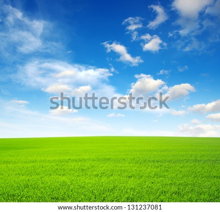 field and bright blue sky