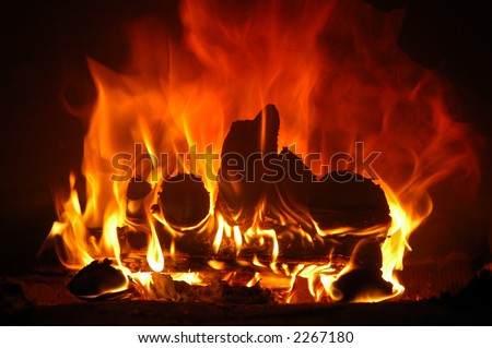 firewood blaze in furnace