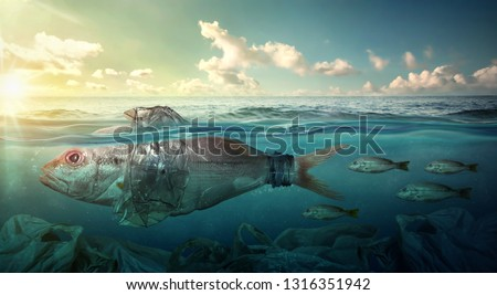 Fish Swims Among Plastic Ocean Pollution. Plastic Pollution Affects Sea Life Throughout the Ocean. Environment Concept