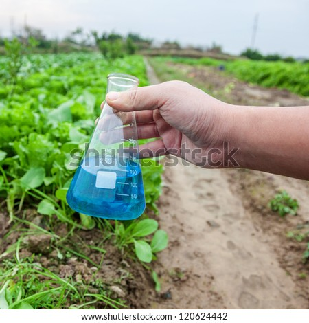 flask with blue solution hold by hand in a lettuce garden