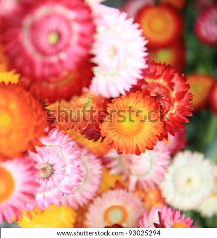 Flower Group. The colored flowers, spherical shape, overlap nicely.