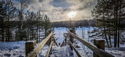 Forest and a lake located in Ogre, Latvia - on a snowy Winter day