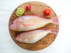 Fresh and ready to cook raw pink Perch fish with ingredients like lemon,chilli and tomatoes on a wooden pad,white background, selective focus.
