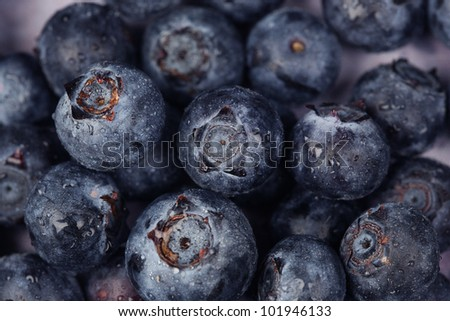 Fresh close-up of organic blueberries