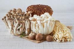 Fresh enoki Wood Ear, Shiitake, Enokitake, shimeji mushroom on an wooden table