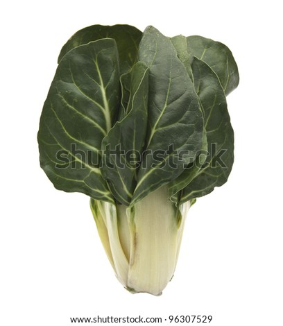 Fresh organic Chard leaves on a white background