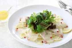 Fresh sea bream carpaccio with salad on white plate
