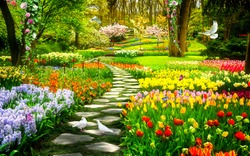 garden of colorful flowers with birds