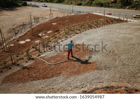 gardeners do grass hydro seeding Stock photo ©