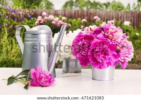 Gardening tools and peony flowers Zdjęcia stock ©