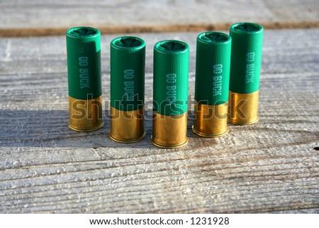 12 gauge ammo