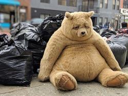 Giant Sad Bear Stuffed Animal Sits on the Sidewalk near the Trash