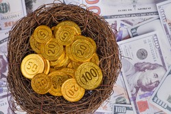 gold coins in nest on US dollar banknote background