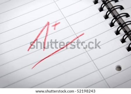 1+ grade, written in red letters in a spiral pad, shallow DOF