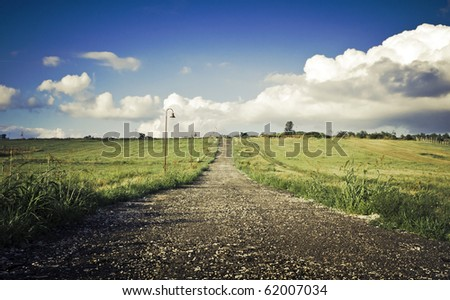 Green field Landscape with country road