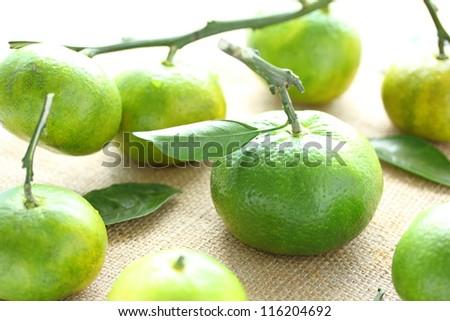 Green orange with leaf