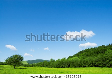 green trees and cloudy sky