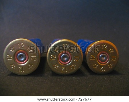 12 guage shotgun shells