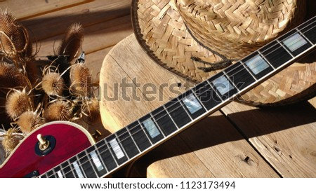 guitar electro and hat                             #1123173494