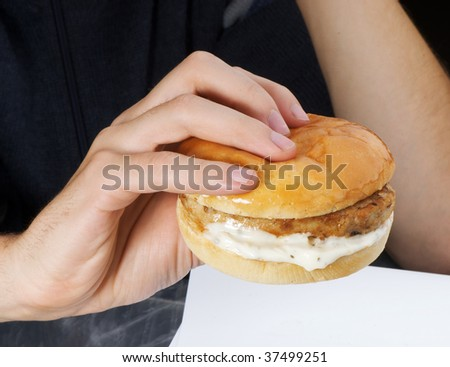 hamburger in the hand - stock photo