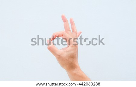 hand in ok sign on a white isolated background #442063288
