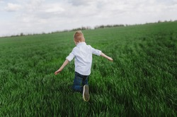 happy child, the boy runs around the green field, lies on the grass, emotional walk and happiness.