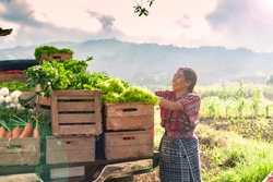 Happy indigenous woman with fresh vegetables in her truck, in the rural area of Guatemala.