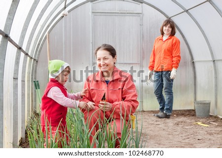 Happy women with child works at hothouse in spring