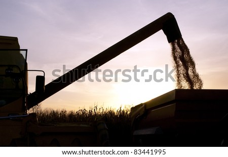 """harvesting silhouette"" / silhouette of harvesting machinery, harvesting corn against sunset."