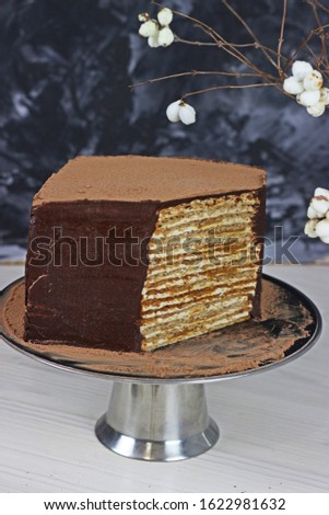 hazelnut coffee cake covered with dark chocolate on a dark background