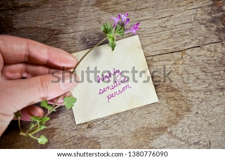 """Highly Sensitive Person"" Written on Paper with Hand Holding a Delicate Flower"
